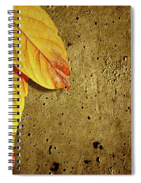 Yellow Fall Leafs Spiral Notebook