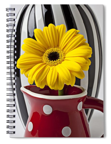 Yellow Mum In Pitcher  Spiral Notebook