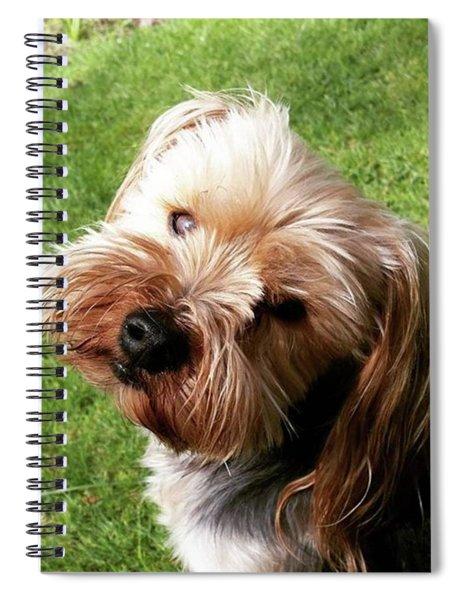 Loving Look Spiral Notebook