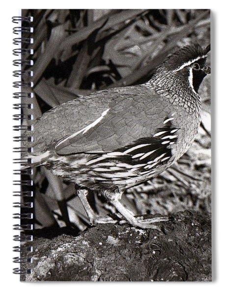 03_it Was Leslie Spiral Notebook