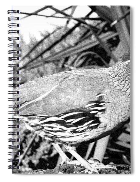 04_when We Returned Spiral Notebook
