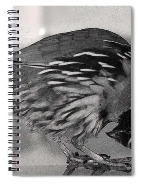 09_peeps Most Unusual Position Spiral Notebook