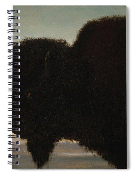 Bull Buffalo Spiral Notebook
