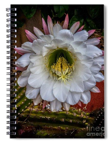 Argentine Giant Spiral Notebook