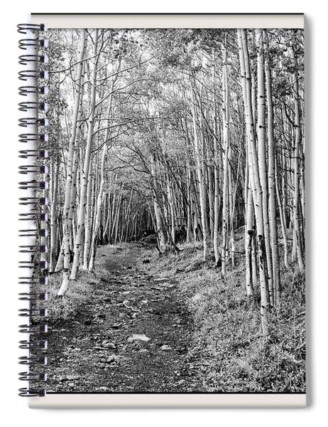 Aspen Forest Spiral Notebook