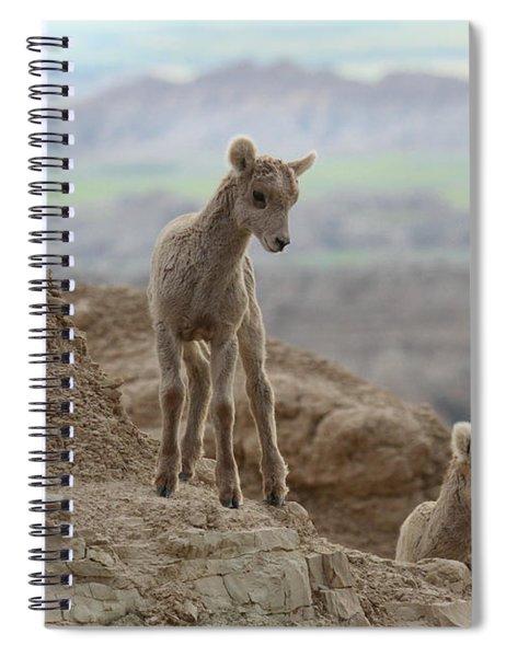 Attention Grabber Spiral Notebook