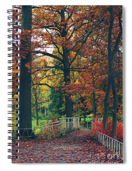 Autumn Impression Spiral Notebook
