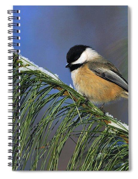 Black-capped Chickadee Spiral Notebook