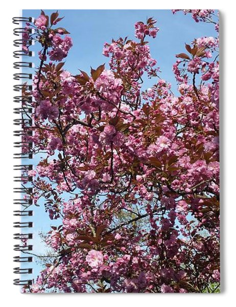 Blossom O'clock Spiral Notebook