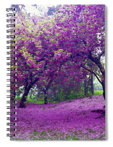Blossoms In Central Park Spiral Notebook