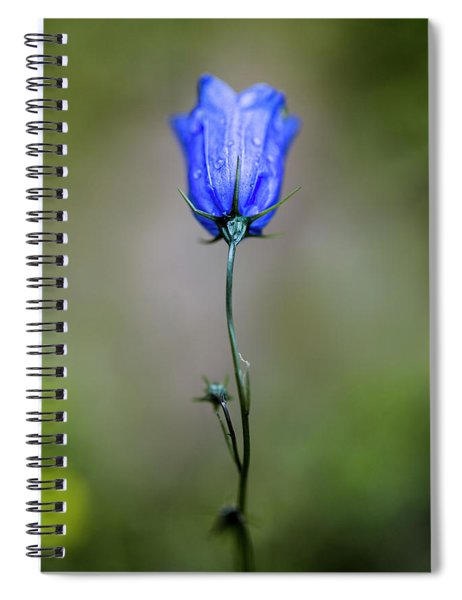 Blue Bell Spiral Notebook