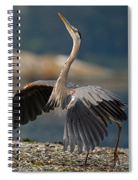 Blue Heron Dance Spiral Notebook