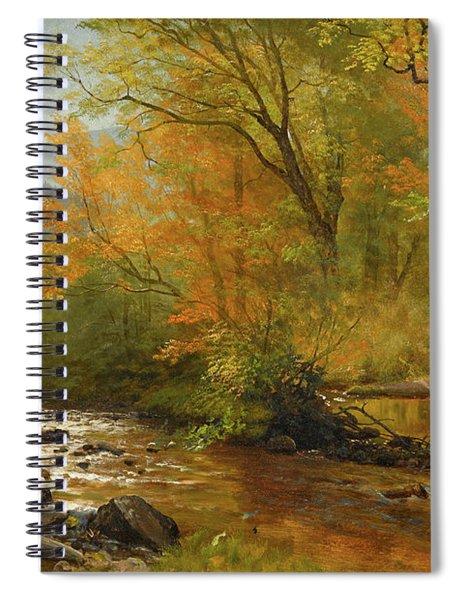 Brook In Woods Spiral Notebook