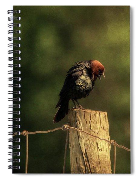 Brown Headed Cowbird  Spiral Notebook