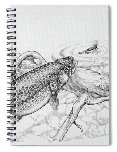 Brown Trout Pencil Study Spiral Notebook