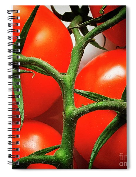Bunch Of Tomatoes Spiral Notebook