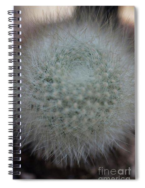 Cactus Spiral Notebook