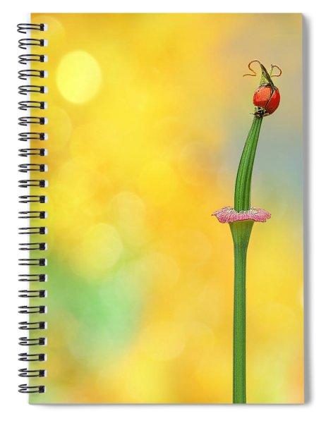 California Girls Spiral Notebook