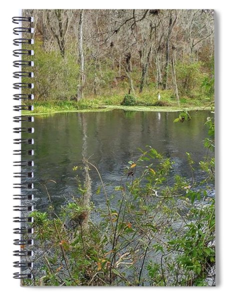 Ripples In The Water Spiral Notebook