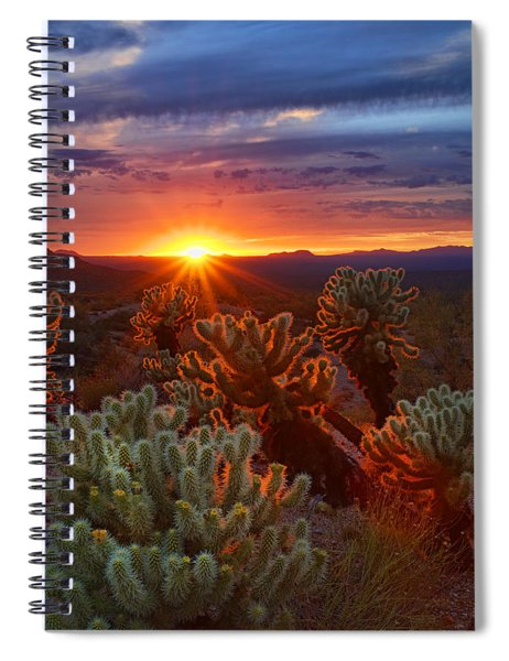 Cholla Sunset  Spiral Notebook