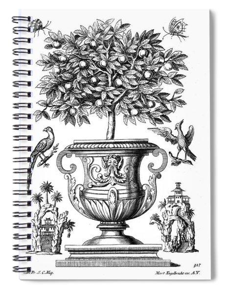 Citrus Trees Spiral Notebook