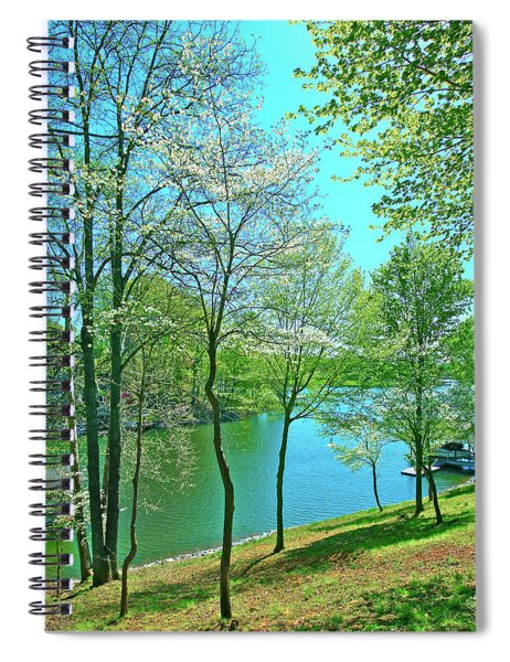 Cluster Of Dowood Trees Spiral Notebook