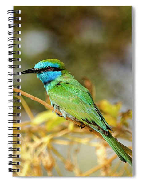 Spiral Notebook featuring the photograph Colors Of Nature by Arik Baltinester