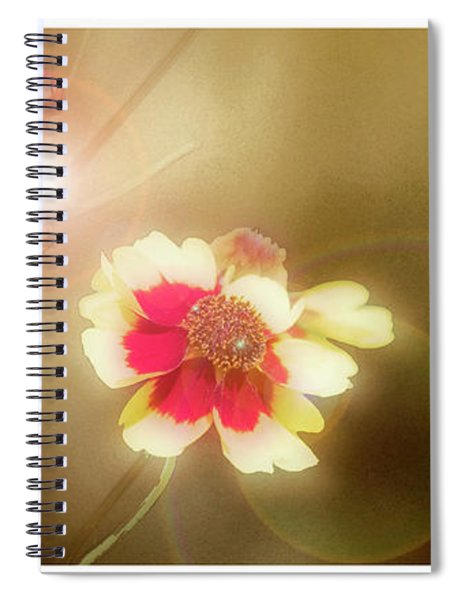 Coreopsis Flowers And Buds Spiral Notebook