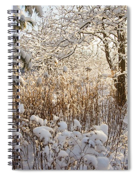 Covered In Snow Spiral Notebook