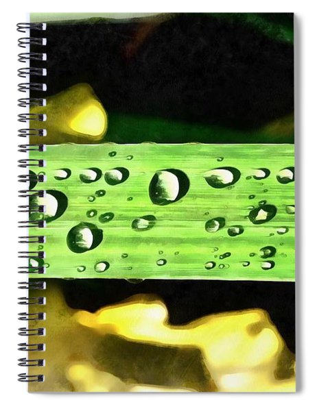 Dewdrops On A Leaf Of Yellow Iris Spiral Notebook