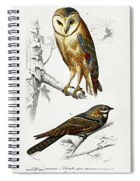 Different Illustrated Types Of Birds Spiral Notebook
