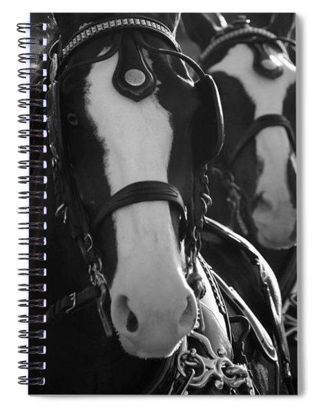 Equine Elegance Spiral Notebook