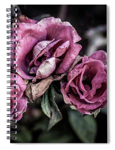 Fading Beauty Spiral Notebook