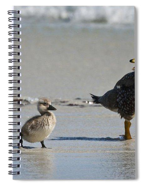 Falkland Steamerducks Spiral Notebook