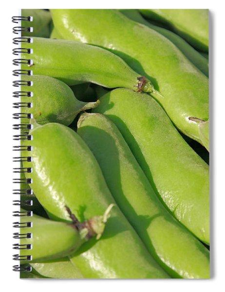 Fava Bean Pods Spiral Notebook