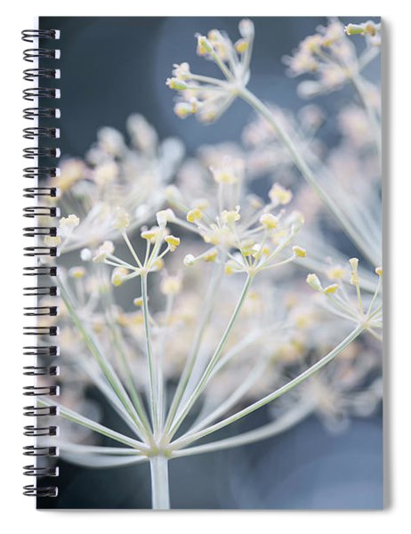 Flowering Dill Clusters Spiral Notebook