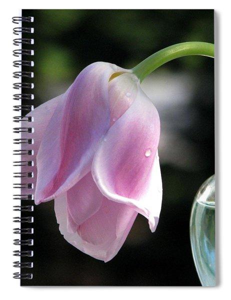 Forlorn Spiral Notebook