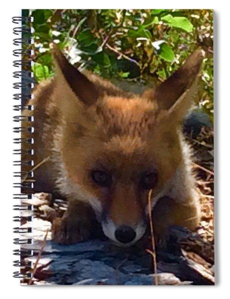 Fox Joy Spiral Notebook