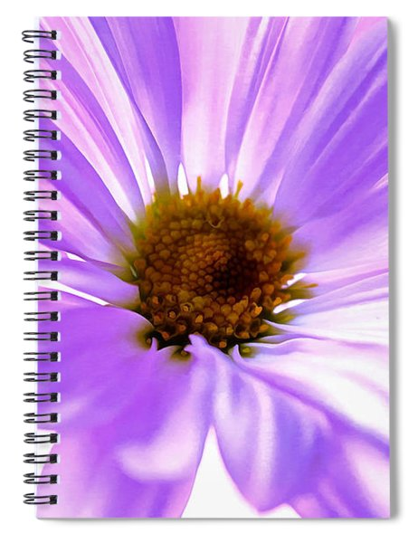 Fragile Memories Spiral Notebook