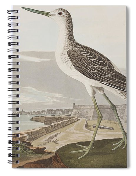 Greenshank Spiral Notebook