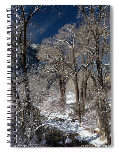 Grizzly Creek Spiral Notebook