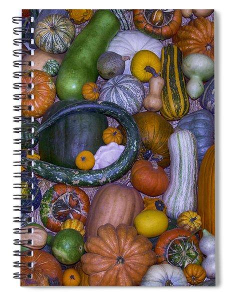 Harvest Abundance  Spiral Notebook