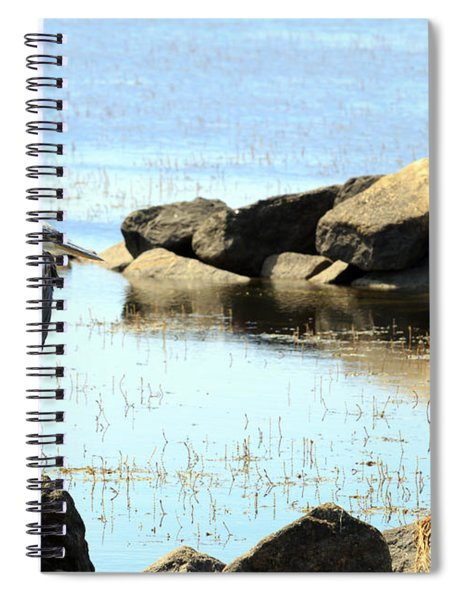 Heron On The Rocks Spiral Notebook