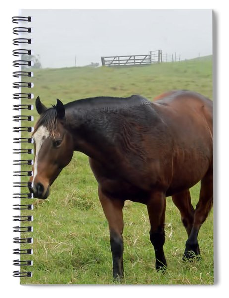 Horse In The Fog Spiral Notebook