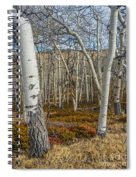 Into The Trees Spiral Notebook