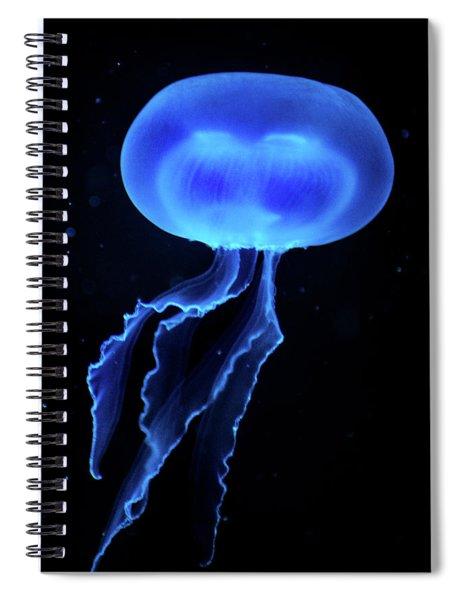Jellyfish Spiral Notebook