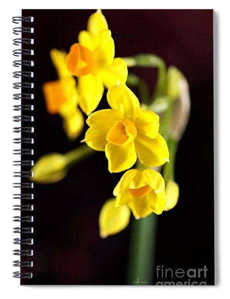 Jonquil Spiral Notebook