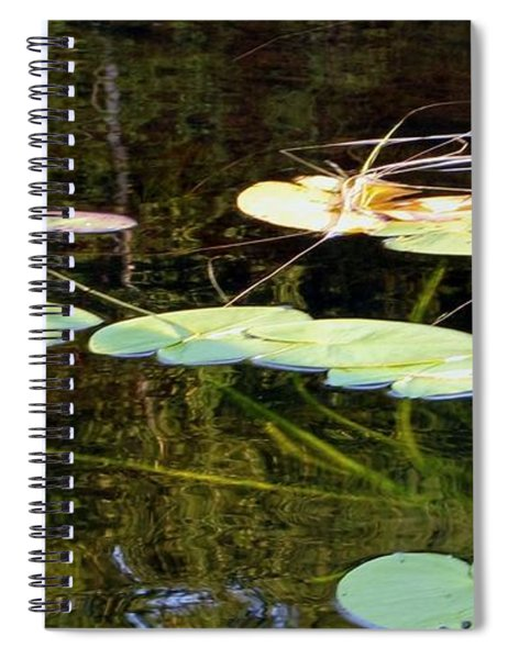 Lily Pads On The Lake Spiral Notebook
