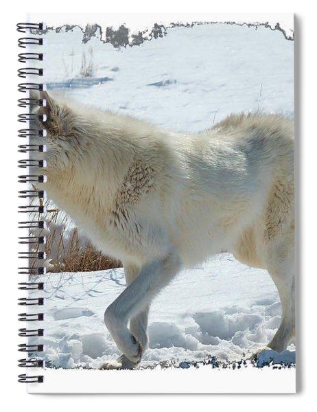 Lone White Wolf Spiral Notebook