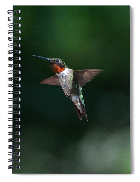 Male Ruby Throated Hummingbird Spiral Notebook